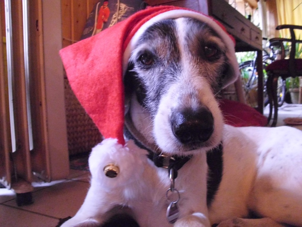 Blu Weihnachten 2012