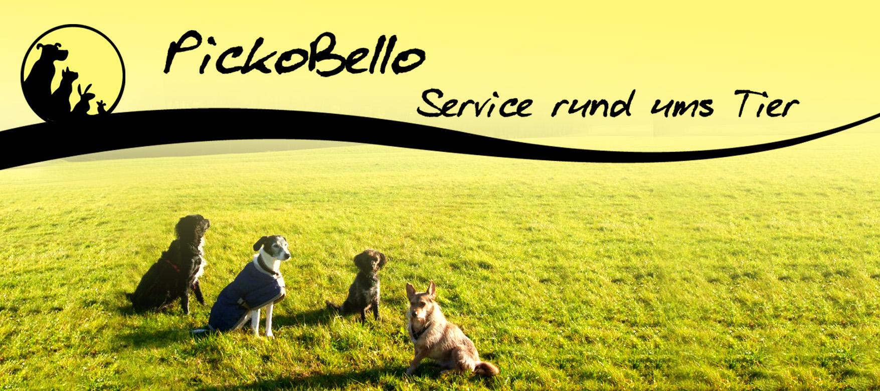 PickoBello Hunde- und Katzenbetreuung